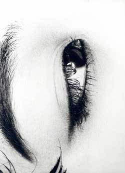 Araki_eye_1