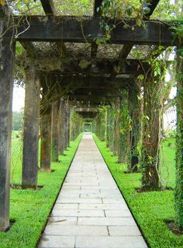 Walkway2_5