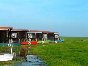 Wetlands11_2